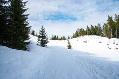 山风景在德国 免版税图库摄影