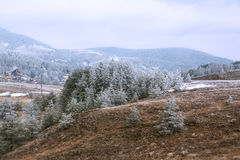 山风景在早晨天空下 免版税图库摄影
