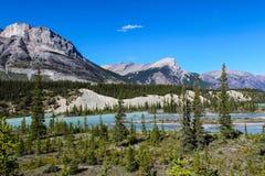 山风景在班夫国家公园 库存照片