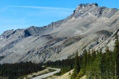 山风景在班夫国家公园 免版税图库摄影