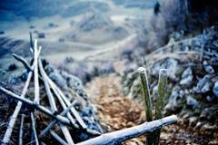山风景在秋天结冰的早晨 免版税图库摄影