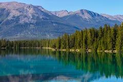 山风景在贾斯珀国家公园 免版税库存照片