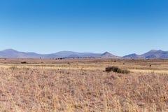 山风景在Cradock 免版税库存图片