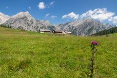 山风景在Walderalm,奥地利,提洛尔附近的阿尔卑斯 免版税库存图片