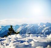 山风景多雪的冬天 免版税库存照片