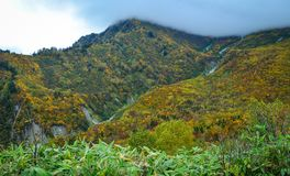 山风景秋天在日本 库存照片