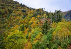 山风景秋天在日本 图库摄影
