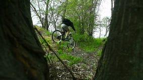 山骑自行车的人十字架小山在森林里 股票录像