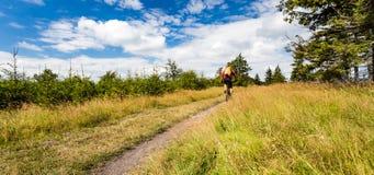 山骑自行车的人循环的骑马在山和森林 免版税库存图片
