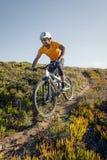 山骑自行车的人骑马线索 库存照片