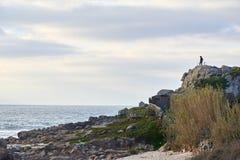 山骑自行车者从峭壁的顶端观察海 库存图片