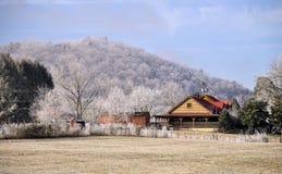 山麓小丘冰冷的山发烟性结构树 免版税库存照片