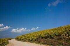 山麓小丘 库存照片
