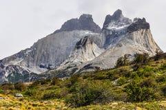 山,托里斯del潘恩国家公园,智利 免版税库存照片
