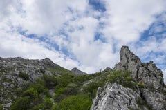 山,登上Catria,亚平宁山脉,马尔什,意大利岩石边缘  免版税库存照片