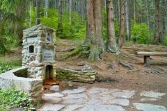 山水的春天在一个森林露天博物馆在Vydrovo 免版税库存图片