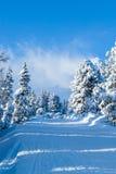 山滑雪线索 免版税图库摄影