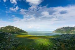 黑山 skadar的湖 免版税库存图片