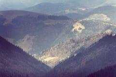 山Forest Hills风景  库存照片