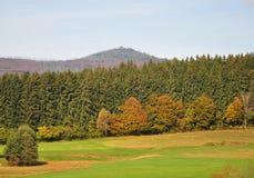 山Lusen,巴伐利亚 库存照片