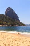 山Sugarloaf红色海滩(普腊亚Vermelha)鸠,里约de 1月 图库摄影