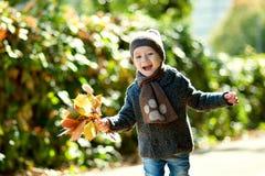 3岁的一个逗人喜爱的小男孩的秋天画象,使用与黄色叶子在公园 免版税库存照片