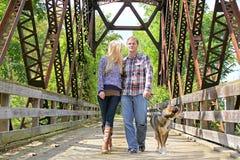 年轻30岁的夫妇走的狗外面在秋天 库存照片