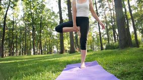 40岁英尺长度做在席子的妇女健身锻炼在地方公园 r 股票录像