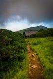 崎岖的庭院风雨棚,在北部的蓝岭山行车通道附近 免版税库存图片