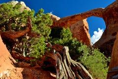 岩层在沙漠1 库存图片