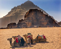 岩层月亮瓦地伦约旦骆驼谷  库存照片