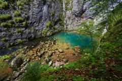 岩溶的春天在罗马尼亚 库存图片