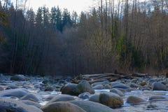 岩石、小河和森林 库存照片