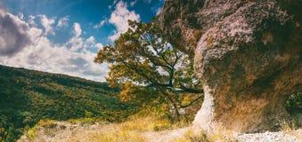 岩石、黄色森林和蓝色多云天空的看法在一温暖的晴朗的秋天天 免版税库存照片