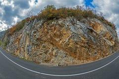 岩石与秋天植被的墙壁背景 免版税库存图片