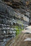 岩石低潮中的爱尔兰 图库摄影