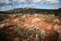 岩石克利特希腊的山 库存图片