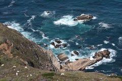 岩石加利福尼亚的海岸 免版税库存照片