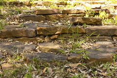 岩石台阶在国家公园 免版税图库摄影