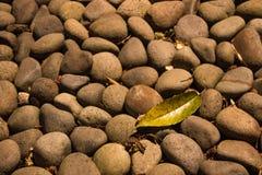 岩石和小卵石 库存照片