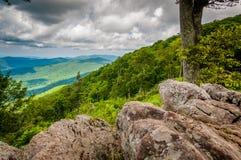 岩石和树在朱厄尔凹陷在Shenandoah国民俯视 免版税库存照片