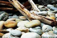 岩石和树桩 图库摄影