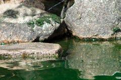 岩石和水纹理 免版税库存图片