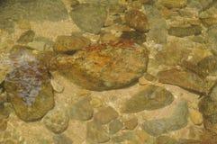 岩石和沙子在河用清楚的水研了 免版税库存图片