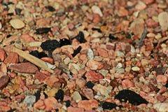 岩石和沙子 库存图片