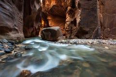 岩石和河在狭窄,流动宰恩国家公园,犹他 库存照片