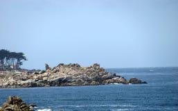 岩石和海景是美丽的在蒙特雷海湾 库存图片