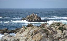 岩石和海洋是美丽的在蒙特雷海湾 免版税库存照片