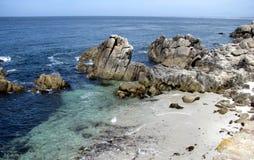 岩石和海洋是美丽的在蒙特雷海湾 免版税库存图片