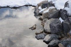水岩石和雪 免版税库存照片